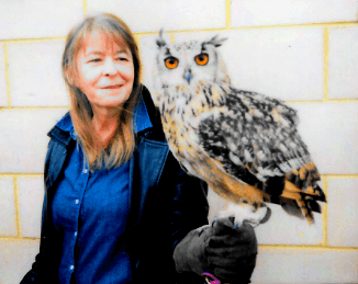 Fiona McCallion Personal development - Bengal Owl hero image