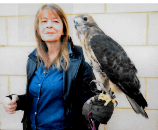 image showing fiona mccallion with an american hawk on her wrist